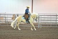 AA Ranch Reining