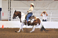 All Age Reining
